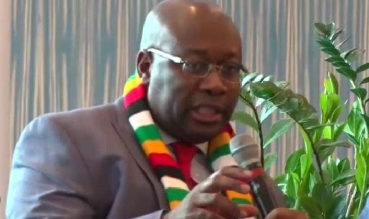 Zimbabwe signs multibillion-dollar mining deal with Chinese company