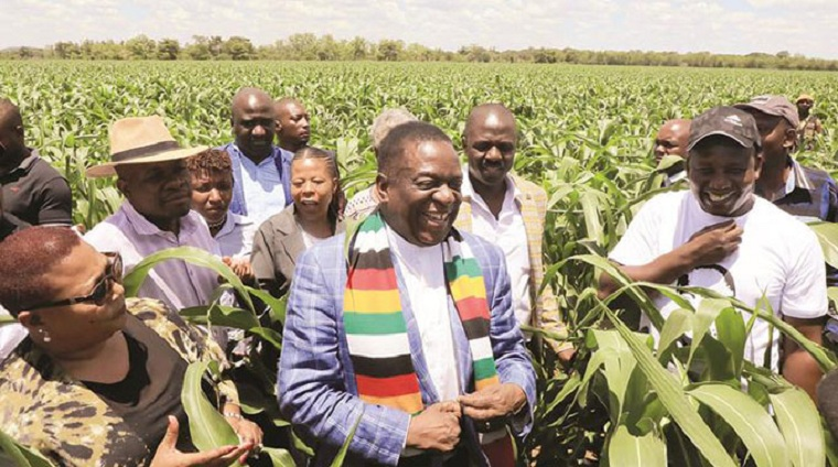 Mnangagwa must lead by example and declare his assets first