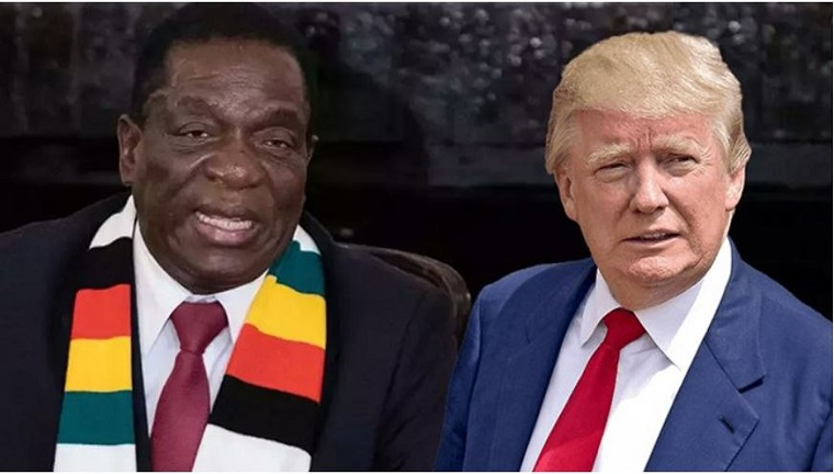 Trump and Mnangagwa have a lot in common