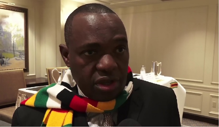 Zimbabwe Foreign Minister questions recent abductions