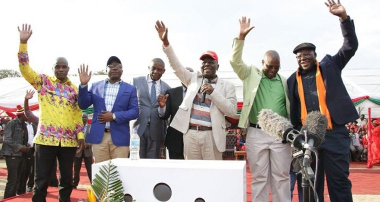 Are Biti, Ncube and Coltart's arguments on the Chamisa Supreme Court ruling genuine?